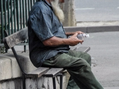 Arles_0005-c53