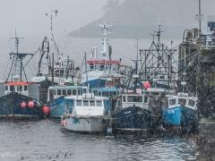 Scottish_Waterfront_Portree_0005