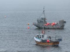 Scottish_Waterfront_Portree__0006