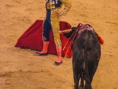 Madrid_Scenes_0019