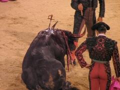 Madrid_Scenes_0020