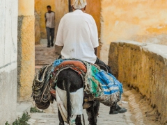 Fez_Morocco_Passages_and_Shops_0001
