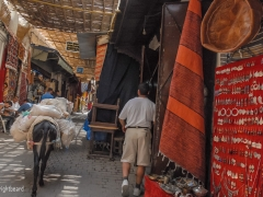 Fez_Morocco_Passages_and_Shops_0014