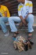 Fez_Morocco_People_and_Animals_0036b