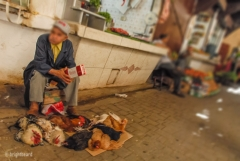 Fez_Morocco_People_and_Animals_0037b